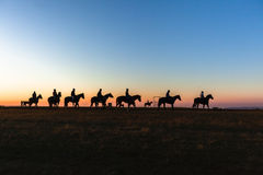 Horses Riders Silhouetted Dawn Royalty Free Stock Photography