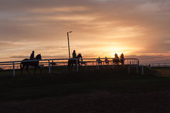 Horses Riders Silhouetted Landscape. Race horses riders early dawn training silhouetted colors on track landscape Royalty Free Stock Photography