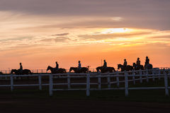 Horses Riders Silhouetted Morning. Race horses riders early morning training silhouetted colors on track landscape Stock Photo