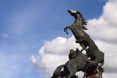 Horses sculpture in Spain Square in Vigo Stock Photos