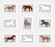Horses set Stock Image