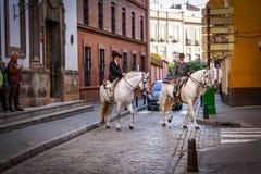 Horses in seville street. Feria de Abril Stock Photos