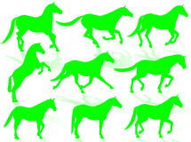 Horses silhouettes. Black horse silhouettes in different poses and attitudes Royalty Free Stock Photo