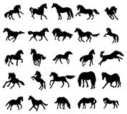 Horses silhouettes set. On white background vector illustration
