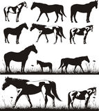 Horses - silhouettes Royalty Free Stock Images