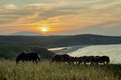 Landscape. Sunset over the Strandja Mountain at the mouth of the Veleka River. stock photos