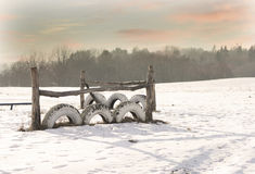 Horses stockade on winter field. Winter landscape at cold evening, Lithuania, Riese village Stock Image