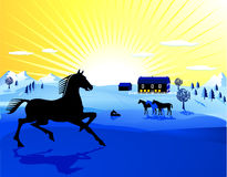 Horses and sunset Royalty Free Stock Photo