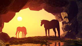 Horses at sunset. Stock Photography