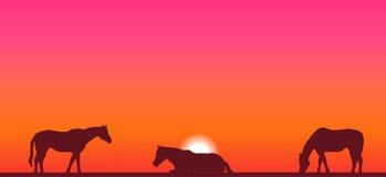 Horses at sunset illustration. Horses on a colorful sunset background royalty free illustration