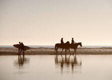 Horses and Surfers royalty free stock photography