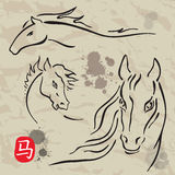 Horses symbols  collection. Chinese zodiac 2014. Stock Photo