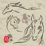 Horses symbols collection. Chinese zodiac 2014. Chinese zodiac 2014. Horses symbols collection. Vector white isolated vector illustration