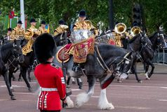 Horses taking part in the Trooping the Colour military parade, London UK. Horses taking part in the Trooping the Colour military parade in honour of the Queen`s stock photo