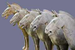 Horses of the Terracotta Warriors Royalty Free Stock Photography