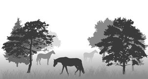 Horses between trees Royalty Free Stock Photography