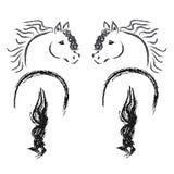 Horses on white background Royalty Free Stock Images