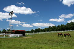 Horses and Windmill. View of two horses grazing on a beautiful day with windmill Royalty Free Stock Photography