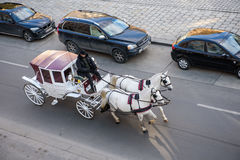 Horses in winter in the Austrian capital, Vienna. The crew pulled by horses transporting people around the city center Vienna Stock Photography