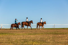 Horses Women Riders. Riding grass fields afternoon color Royalty Free Stock Photos