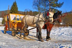 Horses with the wooden carriage Stock Photos