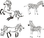 Horses and zebras Stock Photo