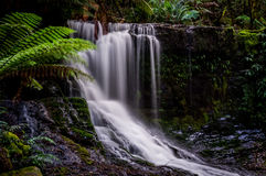 Horseshoe падения, Mt Национальный парк поля, Тасмания, Австралия Стоковое Изображение