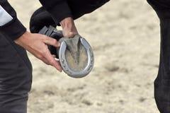 Horseshoe. Left front leg with the horseshoe Stock Images