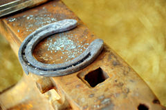 horseshoe Fotografie Stock