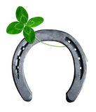 Horseshoe with clover. On white background Stock Image