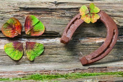 Horseshoe and clover Stock Images