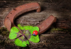 Horseshoe and clover Royalty Free Stock Image