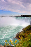 Horseshoe Falls Stock Photography