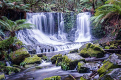 Horseshoe Falls in Mount Field National Park, Tasmania Royalty Free Stock Photos