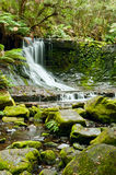 Horseshoe Falls, Mt Field National Park, Tasmania Stock Image