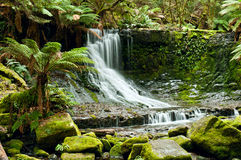 Horseshoe Falls, Mt Field National Park, Tasmania Stock Images