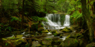 Horseshoe Falls. Mt Field National Park, Tasmania Royalty Free Stock Photo