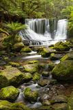 Horseshoe falls in Tasmania, Australia Stock Photos