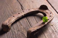 Horseshoe and four leaf clover on wood royalty free stock image