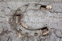 Horseshoe print in the dirt Royalty Free Stock Image