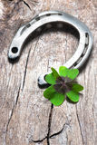 Horseshoe with a shamrock Stock Images
