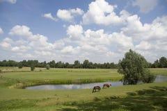 Horseshoe-shaped moat Royalty Free Stock Image
