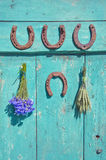 Horseshoe , wheat bunch and cornflower on old wodoen farm door Stock Photography