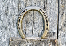 Horseshoe on a wooden door Stock Photography