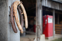 horseshoes Photo stock