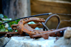 Horseshoes Royalty Free Stock Photography