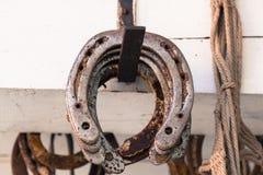 Horseshoes. Stock Photography