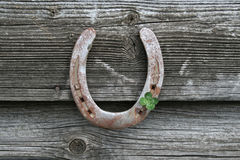 Horseshoes with Shamrock Stock Photo
