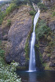 Horsetail Dalingen van de Kloof Oregon van de Rivier van Colombia Royalty-vrije Stock Foto's