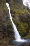Horsetail fällt nahe Multnomah Oregon Stockbilder